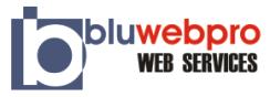 Bluwebpro Web Services